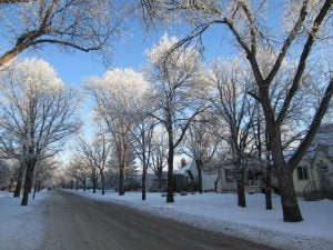 Things to do on a wintery day in downtown Winnipeg
