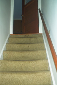Details on carpet stain removal Home Improvements Latest Posts