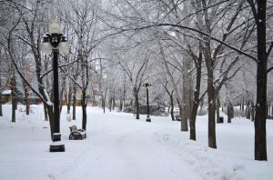 Activities for a Winter Day in downtown #Winnipeg