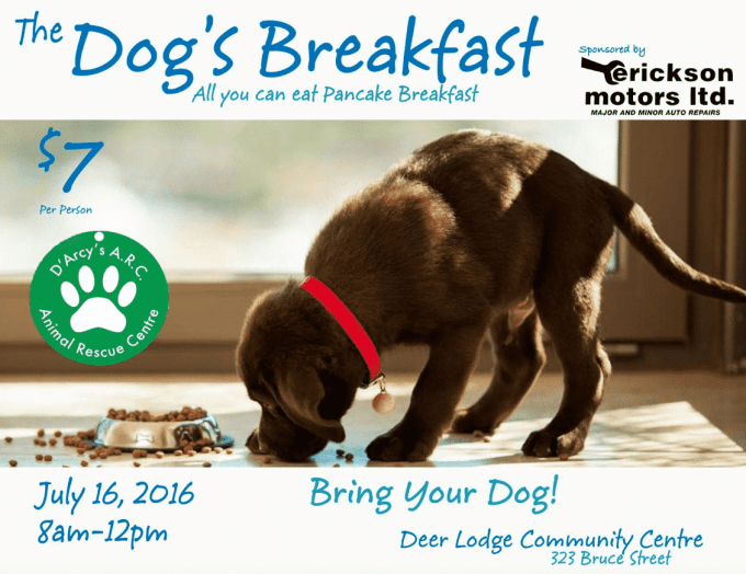 D'Arcy's Animal Rescue Charity All You Can Eat Pancakes July 16th, 2016 Latest Posts