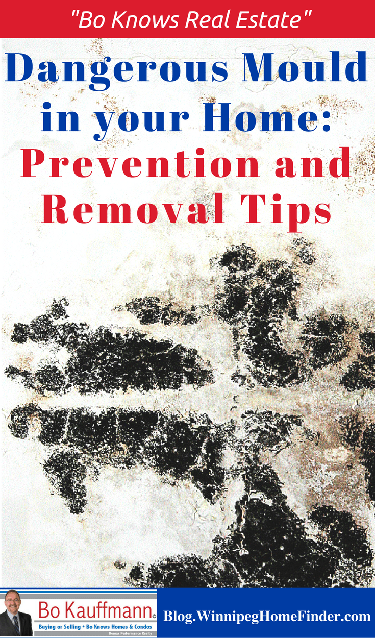 Mould In Your Home: Causes - Health Effects - Prevention Tips