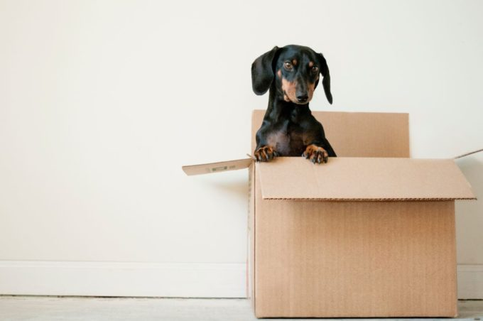 6 Cost Saving Tips save on moving costs