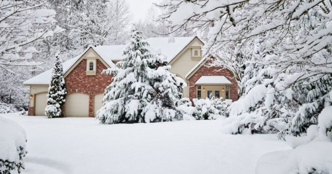 Ways To Make Your Boring Yard More Interesting in Winter