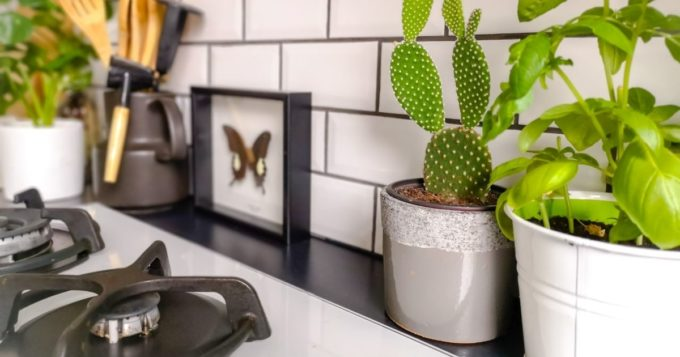 Reasons To Install a Backsplash in Your Kitchen