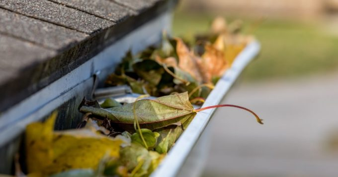 Basic Steps To Clean Your Gutters at Home
